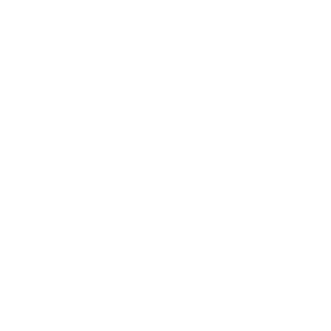 EPP Roadmap Logo